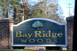 Bay Ridge Woods